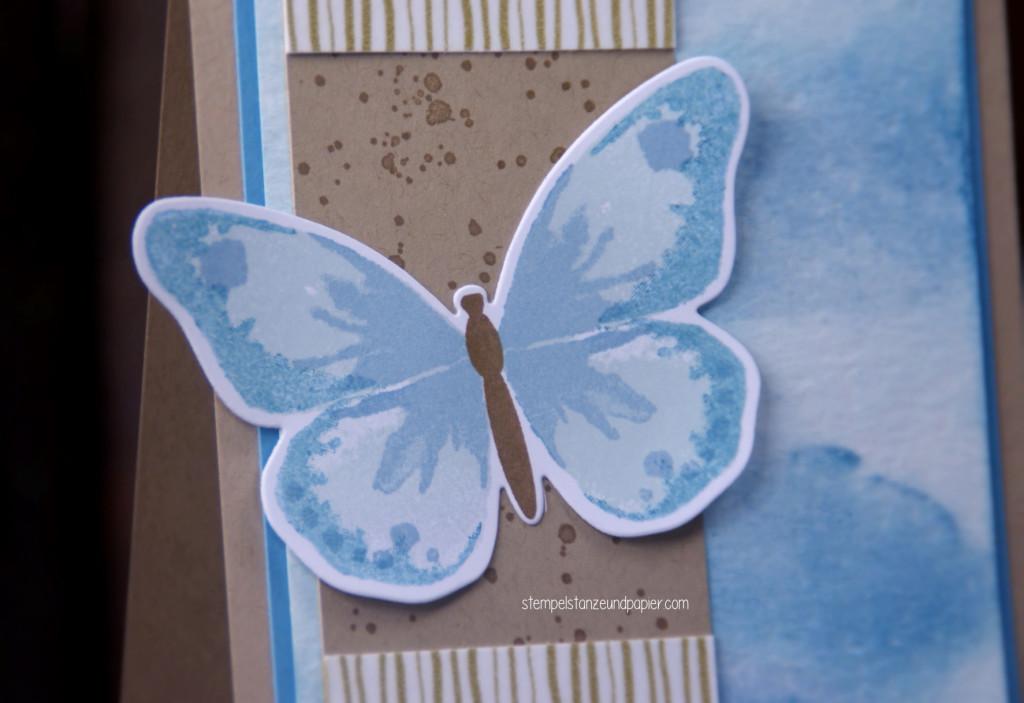 Schmetterling gdp024 catch the designer
