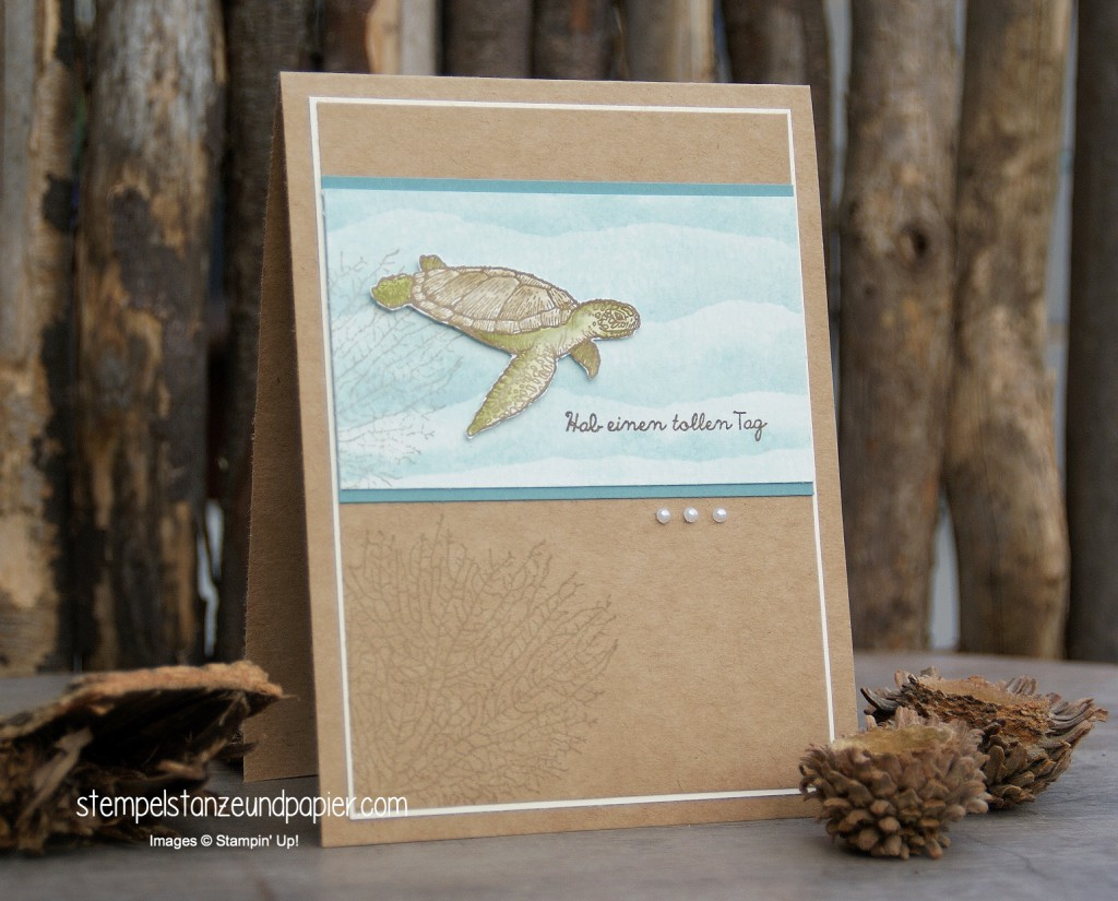 By the Tide | From Land to Sea | Schildkröte | turtle | Koralle | coral | Aquarell | watercolor | stamping up | stempelstanzeundpapier