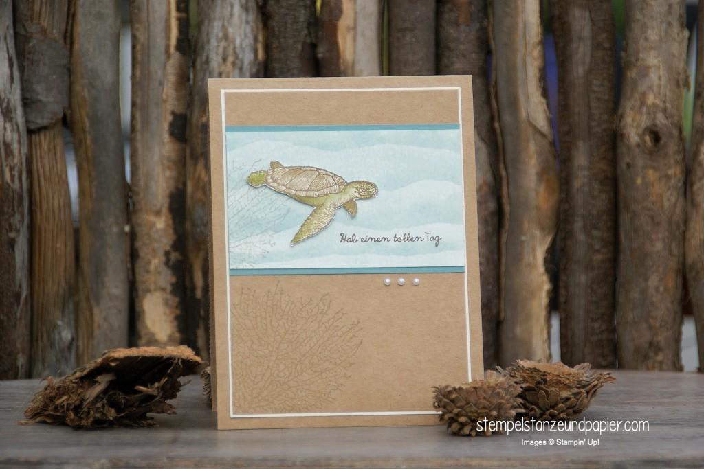 Eine Karte mit einer Schildkröte, gestempelt mit den Stampin' Up!® Stempelsets By the Tide und From Land to Sea